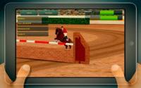 Android sports games:Jumping Horses Champions