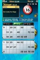 Android casino games:Pocket Bingo Free